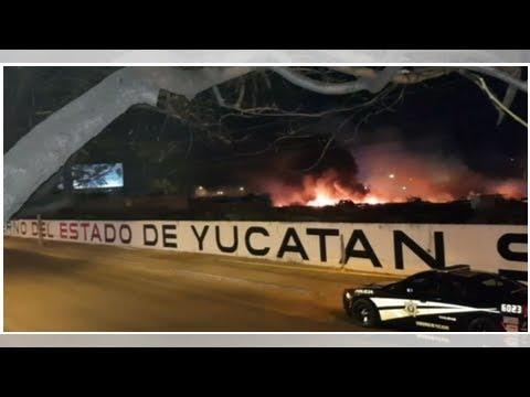 Autoridades investigan causas que provocaron incendio en corralón de Mérida - Televisa News