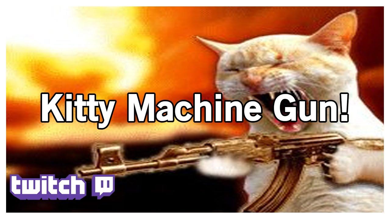 Cats Sniper Gif