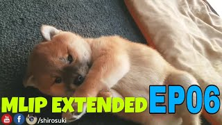 MLIP extended cuts - Ep 06 / Shiba Inu puppies
