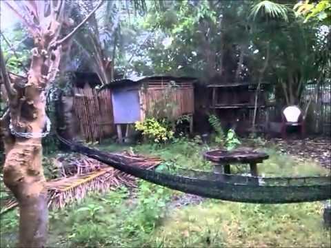 Rain & Sunshine, Another Day on Bohol Island - Philippines