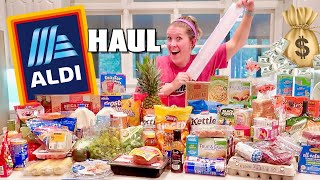 MASSIVE ALDI Grocery Haul! BIGGEST Variety Yet - Our Debt Disaster