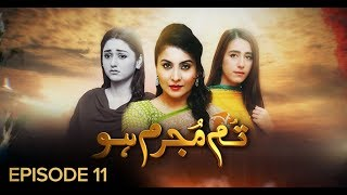 Tum Mujrim Ho Episode 11 BOL Entertainment Dec 19