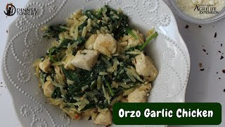 Orzo Garlic Chicken
