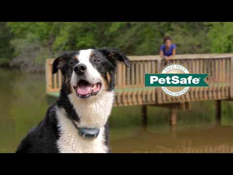 PetSafe®  Remote Trainers