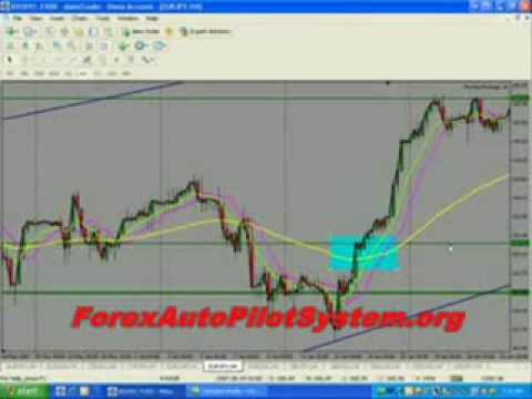 $16,858-in-24-hrs-by-forex-autopilot-system-(forex-autopilot-software)