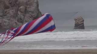 Kite Morro Bay Grey Day Thumbnail