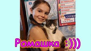 У нас новый житель в семье! (12.17г.) Семья Бровченко.