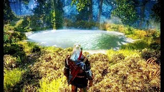 The Beauty of THE WITCHER 2 (insane details, landscapes)
