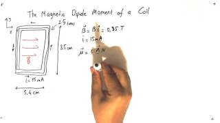 Problem Solving -The Magnetic Dipole Moment of a Coil