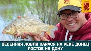 Фидерная  ловля карася в Ростове на Дону с Алексеем Фадеевым.