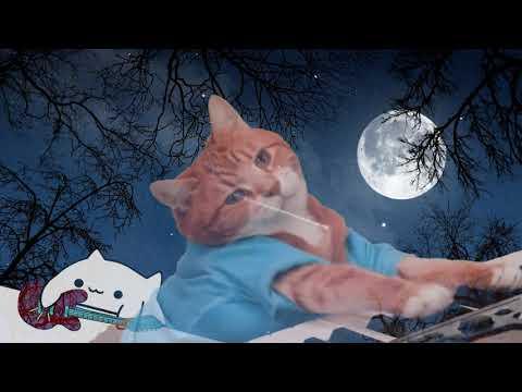 Dancing in the Cat Light