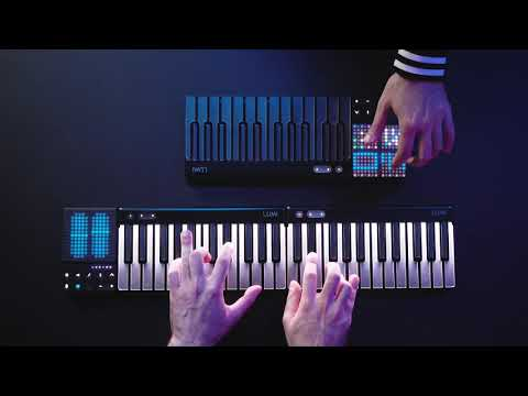 Introducing LUMI Keys Studio Edition: Light up your sound (feat. PARISI)
