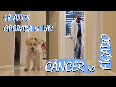 18 anos e há mais de um ano operada de um câncer no fígado