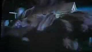 Night of the Lepus commentary - (giant bloodthirsty rabbits)