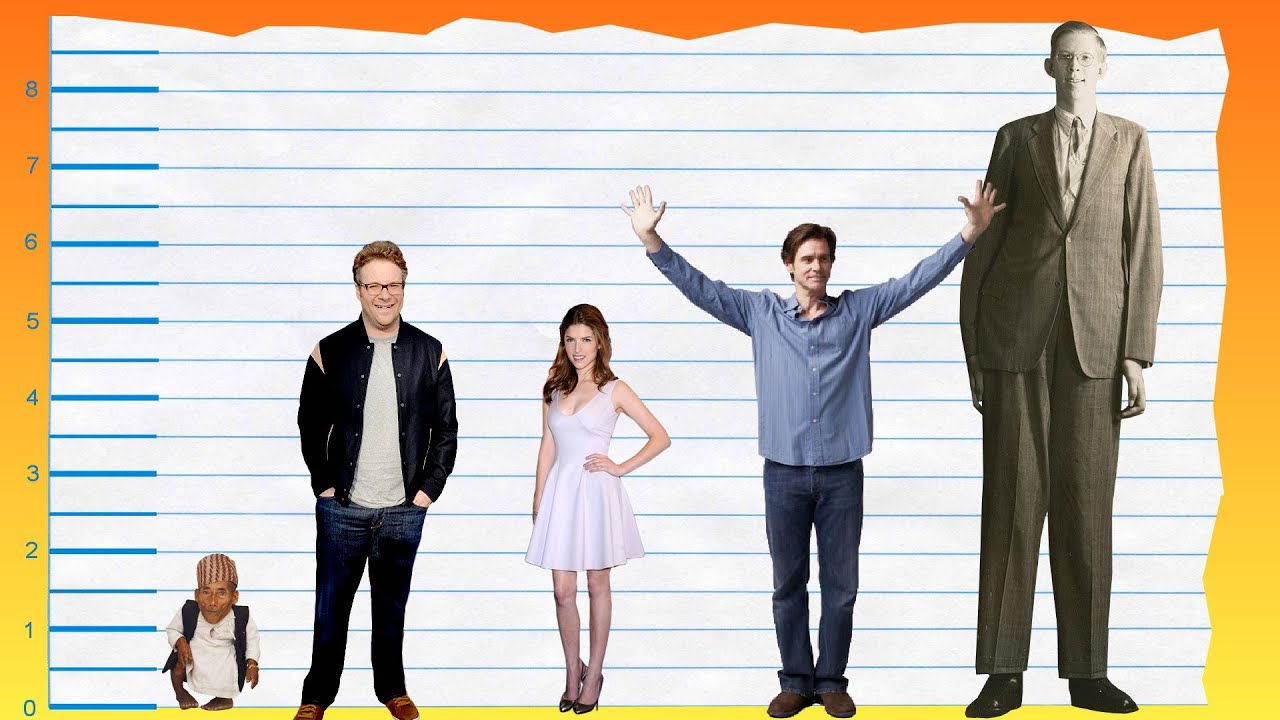 How Tall Is Seth Rogen? - Height Comparison! - YouTube