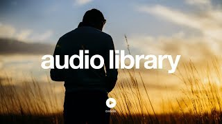 [No Copyright Music] Live The Life - Edwin Ajtún