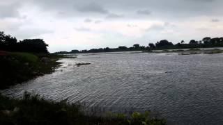 Jalangi River View for Krishnakoli, Krishnanagar, Nadia