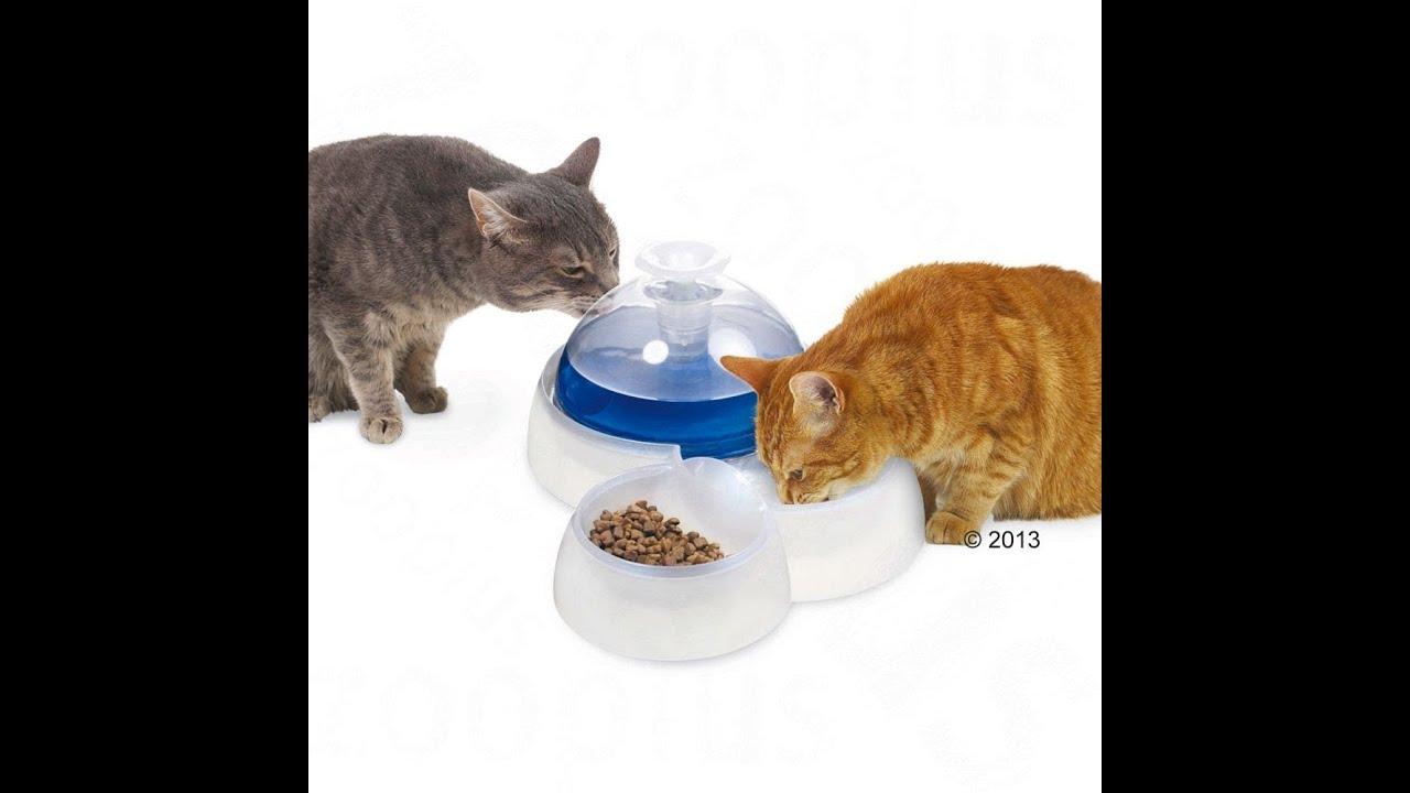 Catit Trinkbrunnen für Katzen und kleine Hunde | zooplus - YouTube