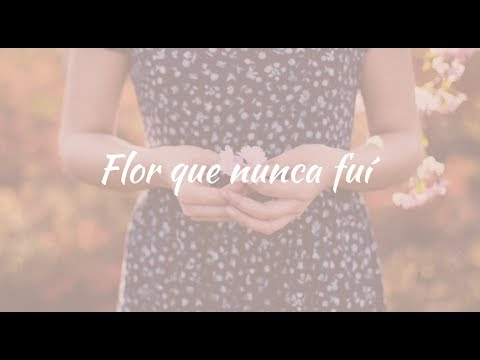 Carla Morrison - Flor que nunca fui (letra)