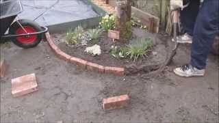 Brick Construction For A Tree Area Border