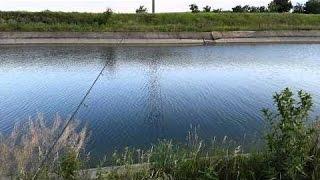 Наша рыбалка на магистральном канале за АКИМОВКОЙ(Разнообразная рыбалка с выездом, обычная ни чем не отличающая от других водоемов в нашей местности ну и..., 2016-09-10T03:54:35.000Z)