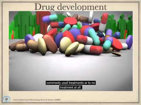 Drug design master seminar