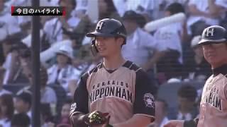 2019年5月5日  千葉ロッテ対北海道日本ハム 試合ダイジェスト