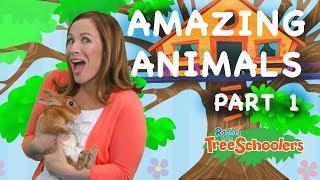 Amazing Animals   Treeschool   PART 1   Educational Kids Videos