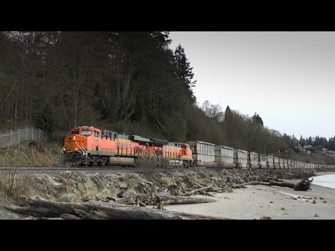 Freight Trains at Howarth Park, Everett, WA 4K