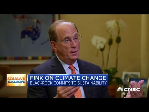 BlackRock CEO Larry Fink on shifting investment strategy towards environmental sustainability