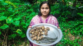 Spotted Snakehead Fish with Taro Village Cooking Recipe by Village Food Life