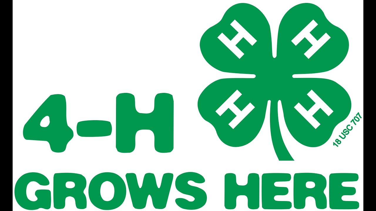 4H Grows Here - YouTube