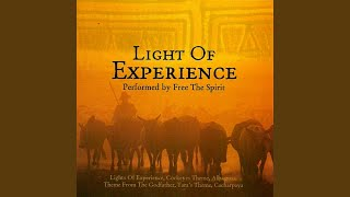 Light of Experience