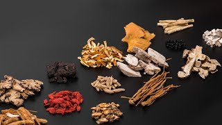 U.S. experts say traditional Chinese medicine shows promise in treating COVID-19