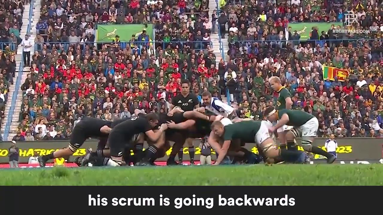 Springbock Hocker What New Zealanders Think Of Springbok Malcolm Marx