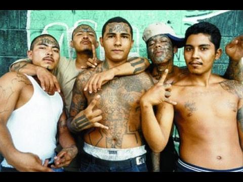 Documentaire - La Guerre Raciale à Los Angeles - Gangs Latinos vs Gangs Noirs