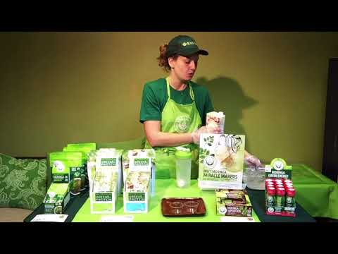 Moringa Greens and Proteins Smoothie Demo Training