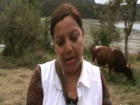 Entrevista Teolinda Higueras.wmv