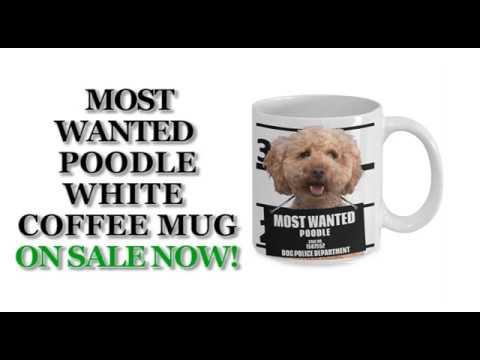 most-wanted-poodle-–-11oz-white-ceramic-coffee-mug