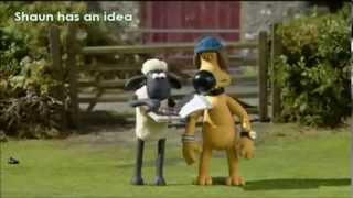 Shaun The Sheep -- VITA DA PECORA -- il toro--