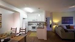 Avila Apartment Homes - Menifee, CA