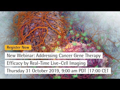 Addressing cancer gene therapy efficacy by real-time Live–Cell Imaging