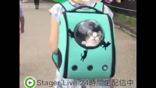 iPhone:https://itunes.apple.com/jp/app/stager-live-raibu-pei-xintsu...
