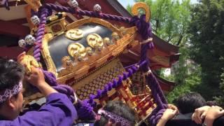 2016年荒川区・スサノオ神社天王祭・神輿振り