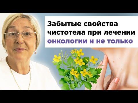 Забытые свойства чистотела при лечении онкологии и не только