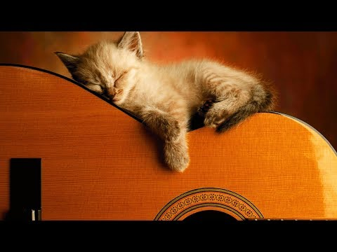 Ultimate Relaxing Guitar Music Collection | #playlist - Поисковик музыки mp3real.ru