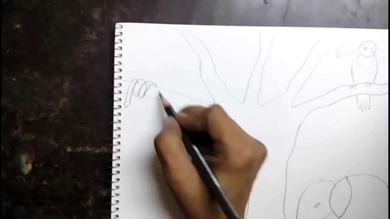 How To Draw A Jungle Scene For Kids Youtube