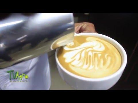 Cómo hacer café latte- TvAgro por Juan Gonzalo Angel