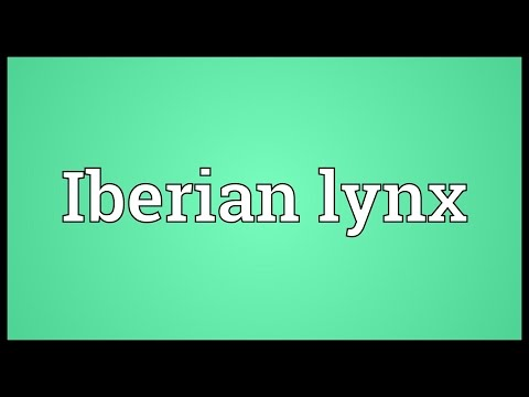 Iberian lynx Meaning