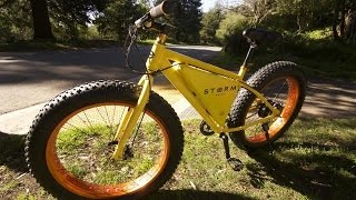 Storm Affordable Electric Bike